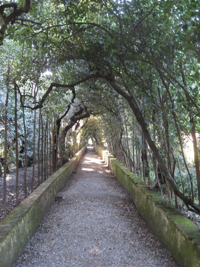 Boboli-arched-walk2-web