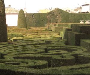 Amazing Italian topiary hedges.